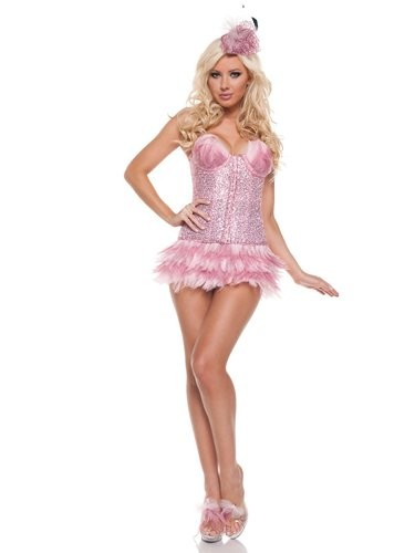Fantasia Feminina Flamingo